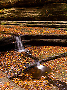 Matthiessen State Park on a cool, overcast, rainy autumn day, perfect to make the colors pop.