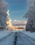 Low winter sun illuminates the Chugach Mountains and hoarfrost on trees along a road in Southcentral Alaska. Afternoon.