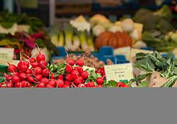 THEMENBILD - frisches und saisonales Obst und Gemüse wird am Wochenmarkt verkauft. Radischen auf einem Marktstand, aufgenommen am 21. April 2018, Salzburg, Österreich // fresh and seasonal fruits and vegetables are sold at the weekly market. Radical on a market stall on 2018/04/21, Salzburg, Austria. EXPA Pictures © 2018, PhotoCredit: EXPA/ Stefanie Oberhauser