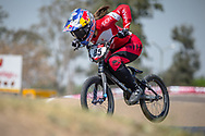 #85 (HATAKEYAMA Sae) JPN during practice at Round 9 of the 2019 UCI BMX Supercross World Cup in Santiago del Estero, Argentina