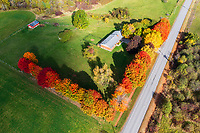 https://Duncan.co/rural-home-and-fall-color