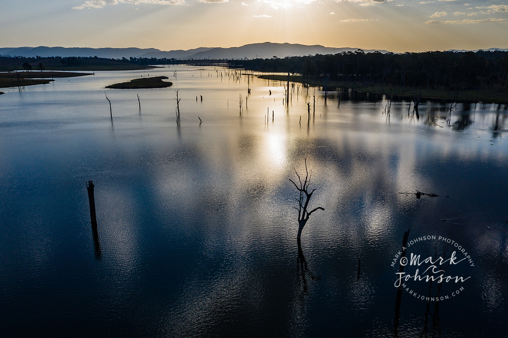Aerial view of a forest of dead trees in Lake Somerset, Queensland, Australia