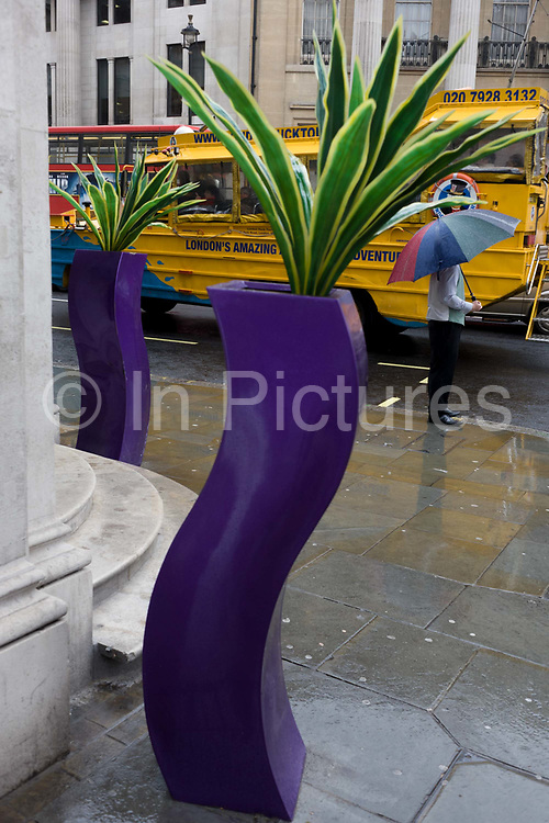 A man stands sheltering from April rain under his umbrella near and a pseudo-artistic plant stand feature in central London. The splash of colour and nature looks incongruous and eccentric on this central London street near Trafalgar Square and seasonal rain is falling on the capital's pavements.