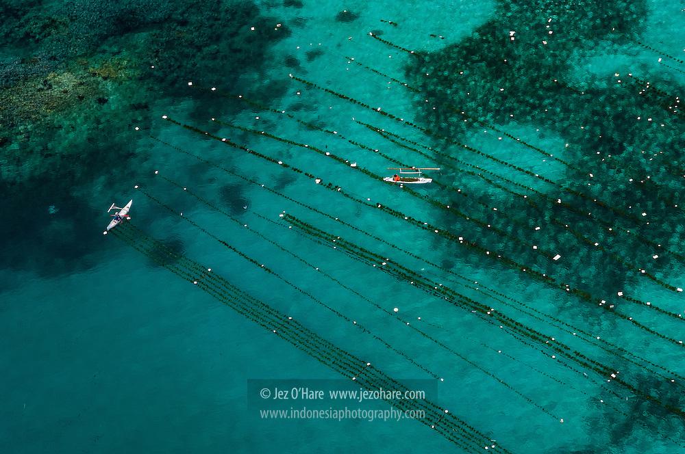 Kangean Islands, East Java, Indonesia.