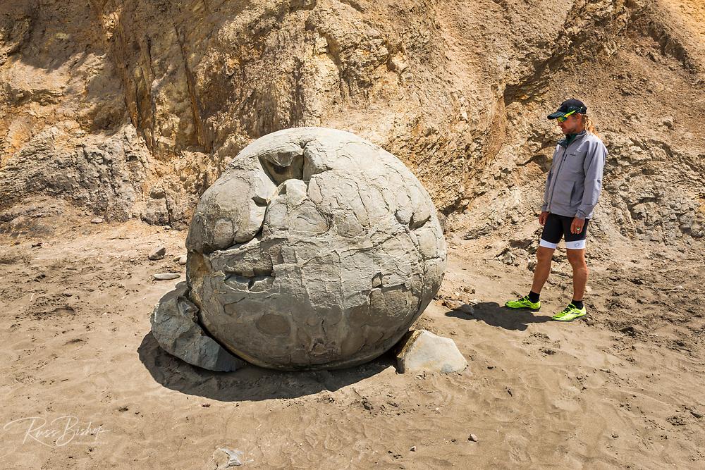 Exploring the Moeraki Boulders, Moeraki, Otago, South Island, New Zealand