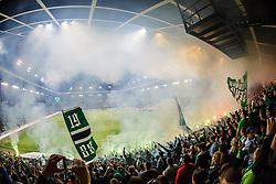 Green dragons during football match between NK Olimpija Ljubljana and NK Maribor in 33rd Round of Prva liga Telekom Slovenije 2015/16, on May 7, 2016, in SRC Stozice, Ljubljana, Slovenia. Photo by Grega Valancic / Sportida