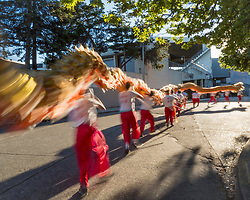 United States, Washington, Seattle. Chinese Lion Dance troop rehearsing for Seattle SeaFair parade.