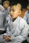 A young monk chants sutras at the monastary at the Thienmu Pagoda, Hue, Vietnam.