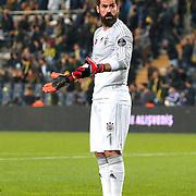 Fenerbahce's goalkeeper Volkan Demirel during their Turkish superleague soccer match Fenerbahce between Bursaspor at the Sukru Saracaoglu stadium in Istanbul Turkey on Monday 20 April 2015. Photo by Kurtulus YILMAZ/TURKPIX