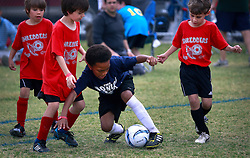 23 March 2013. New Orleans, Louisiana,  USA. .Carrolton Boosters Soccer. Under 8's. Quarter finals. Owls win through over the Shredders. .Photo; Charlie Varley.