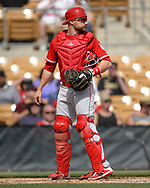GLENDALE, ARIZONA - MARCH 04:  Jonathan Lucroy #20 of the Los Angeles Angels catches against the Chicago White Sox on March 4, 2019 at Camelback Ranch in Glendale Arizona.  (Photo by Ron Vesely)  Subject:  Jonathan Lucroy