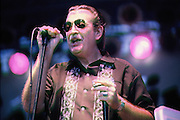 Harmonica great, Charlie Musselwhite performs at the Memphis in May Music Festival.