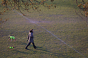 As the second week of the Coronavirus lockdown continues around the capital, and the UK death toll rising by 563 to 2,325, with 800,000 reported cases of Covid-19 worldwide, in accordance with the government's advice for social distancing, a man exercises his dogs in Ruskin Park, a south London green space now being used more by isolating families and households, on 31st March 2020, in London, England.