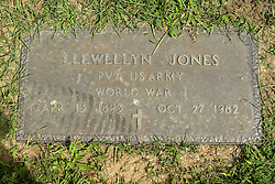 31 August 2017:   Veterans graves in Park Hill Cemetery in eastern McLean County.<br /> <br /> Llewellyn Jones  Private US Army  World War I Apr 13 1893  Oct 27 1982