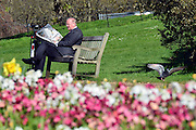 © Licensed to London News Pictures. 02/05/2013. London, UK People enjoy the sunshine in London's Hyde Park today 2nd May 2013. Photo credit : Stephen Simpson/LNP