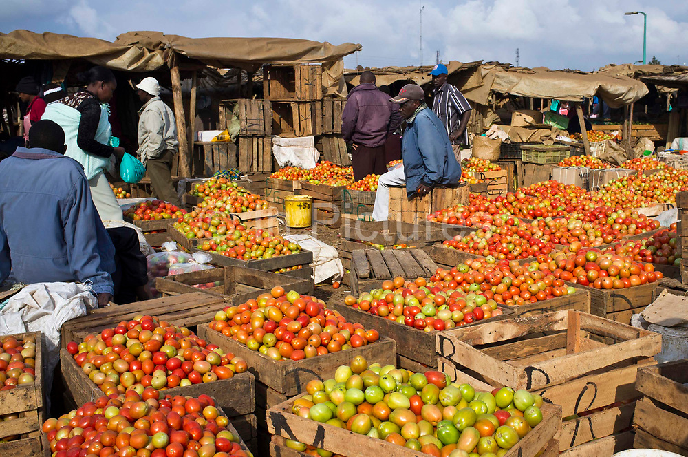 The tomato stalls at Makongeni Market, Thika, Kenya.  The market work closely with Afcic, Action for children in conflict, and are trying to encourage the kids to go to school. The manager has banned children from working in the market during school hours.