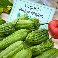 Organic bitter melon  for sale at a farmers market. (Momordica charantia). These bittermelons are of the  China phenotype variety and is 2030 cm long, oblong with bluntly tapering ends and pale green in color, with a gently undulating, warty surface.