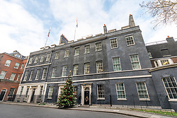 © Licensed to London News Pictures. 02/12/2017. London, UK. The Christmas tree stands outside the door of 10 Downing Street. Photo credit: Rob Pinney/LNP