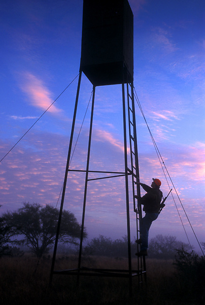 Stock photo of  a man climbing into a deer blind early in the morning