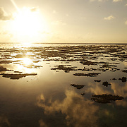 The sunrise and clouds are reflected in tide pools and reef at low tide, Lady Elliot Island, Australia