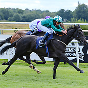 Lingfield 26th August