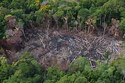 Slash & burn<br /> Amerindian agriculture<br /> Savanna <br /> Rurununi<br /> GUYANA<br /> South America