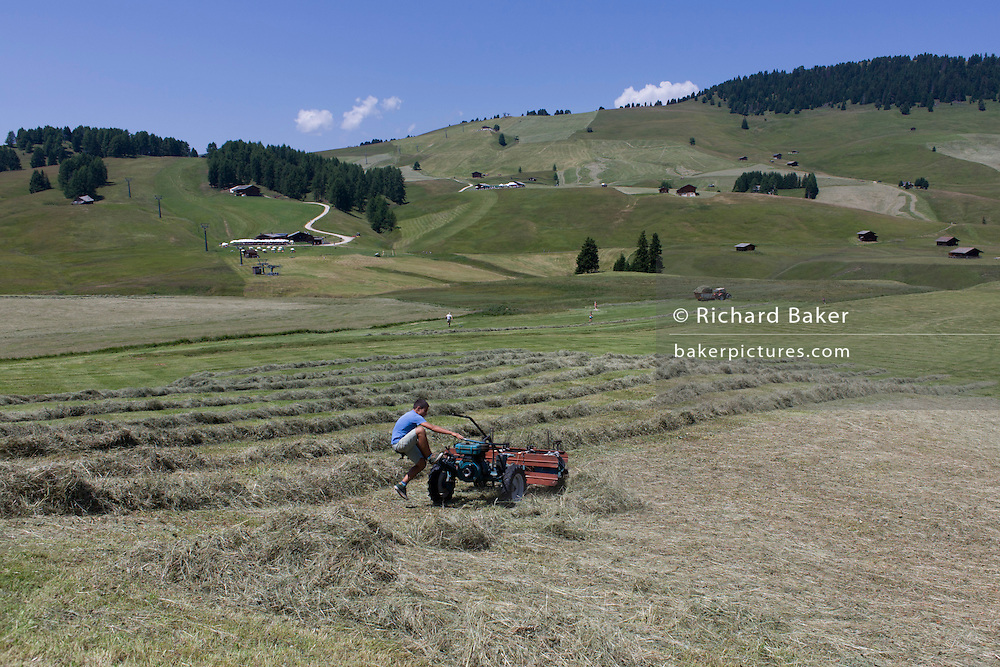 Young boy manhandles haymaking machine on the Siusi plateau, above the South Tyrolean town of Ortisei-Sankt Ulrich in the Dolomites, Italy.
