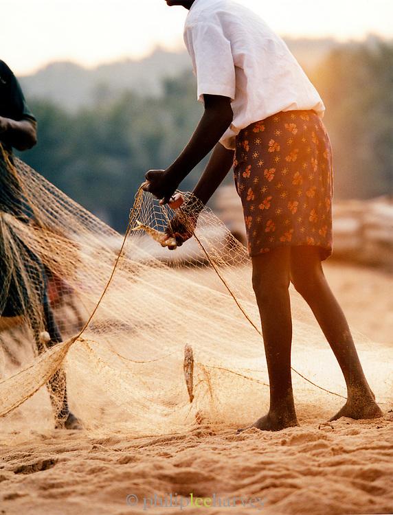 Fishermen sorting fishing nets on a beach, Kerala, India