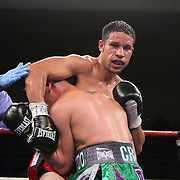 """Orlando Cruz (green trunks) , ranked as the #4 Lightweight by the WBO, fights against Jorge Pazos at the Kissimmee Civic Center in Kissimmee, Florida, on Friday, October 19, 2012. The Puerto Rican Cruz recently described himself as """"a proud gay man"""" and the first active boxer having pronounced so, in boxing history. Cruz won the fight in a 12-round decision. (AP Photo/Alex Menendez)"""