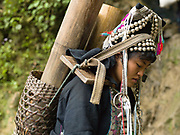 A married Akha Nuquie woman carries a bamboo basket filled with traditional bamboo water carriers full of water back to her village of Ban Chakhampa, Phongsaly province, Lao PDR.