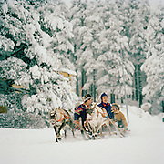 A group of Sami being pulled through the forest by reindeer and sleigh in Lapland, Sweden
