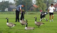 Nieuwerkerk aan de IJssel - Openbare golfbaan Hitland. ganzen Foto KOEN SUYK