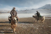 A Kyrgyz caravan progressing over the plain of Mirzo Murad, before reaching the Little Pamir plateau. They are coming down to Sarhad village to trade, a 5 days journey...Trekking up the Wakhan frozen river, the only way up to reach the high altitude Little Pamir plateau, home of the Afghan Kyrgyz community.