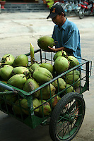 Though most Vietnamese markets are very colorful and active, Hoi An's market hums and vibrates with action from morning till midday.  Here you'll find everything from fresh coconuts to herbs and produce.
