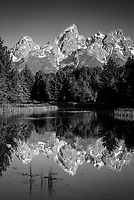 The Tetons are reflected at Schwabachers Landing in Grand Teton National Park, Wyoming.