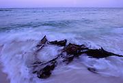 Driftwood on beach in surf - Destin, Florida.