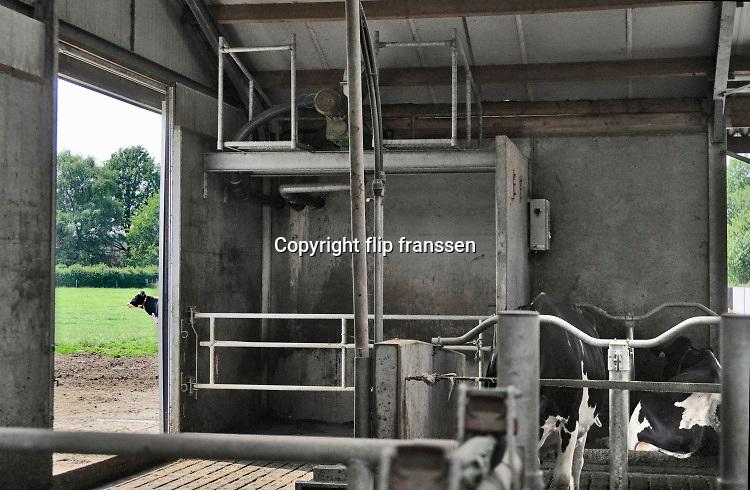 Nederland, Dreumel, 10-6-2019Koeien staan in de stal bij een melkveebedrijf. De dieren eten gras, hooi, kuilvoer. Er is een open dag georganiseerd door zuivelverwerker Friesland-Camoina . Foto: Flip Franssen