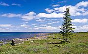 Artillery Lake, Northwest Territories