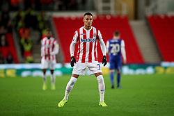 Stoke City's Tom Ince