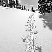 Heather Goodrich heads into the Teton backcountry.