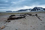Ancient whaling camp. Remains of a Furnace for producing whale fat. Spitzbergen, Svalbard Islands, Norway