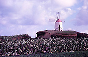 Traditional windmill at Guatiza, Lanzarote, Canary Islands, Spain, 1979 -
