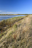 Coastal lagoons and saltmarsh at Pennington Nature Reserve on the Hampshire coast, UK