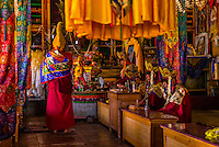 Buddhist monks of the Yellow Hat sect praying (The Dalai Lama's portrait is in the background) at the Diskit Monastery, Nubra Valley, Ladakh, Jammu and Kashmir State, India.