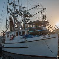 Commercial fishing boats line the docks at Pillar Point Harbor near Half Moon Bay, California.