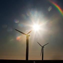 Wind turbines at Drone Hill Wind Farm North, 23/1/2012