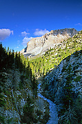 Blackleaf Creek and Canyon in the Rocky Mountain Front. Lewis and Clark National Forest, Montana.