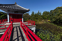 """Kogen-in is a part of Teramachi """"temple town"""" in Karasuyama, where a variety of Buddhist sects are represented. Senkoji, sequesters the grave site of world-renownedukiyo-eartist Kitagawa Utamaro. The hushed area is rare in Tokyo. Of all the temples in Teramachi, Kogen-in is the most impressive, graced with a carp pond and pavilion on its lotus pond.  The temple is devoted to Arima Yorimoto who converted to Buddhism and built a temple in Shinagawa. Ikei, the first priest of the temple, mastered the tea ceremony and moved the temple to Teramachi Karasuyama in 1926.  There is a small pavilion built in the middle of Benten-ike Pond Ukigodo, which enshrines Hosho Benzaiten."""