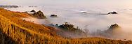 Vietnam Images-Panoramic landscape-nature-Moc Chau highland