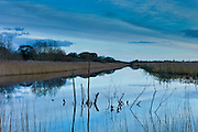 Avalon Marshes at Shapwick Heath Nature Reserve in Somerset, UK